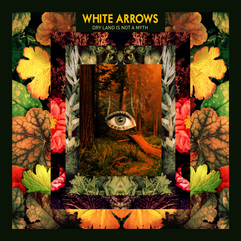 WHITE_ARROWS_cover-800px_800