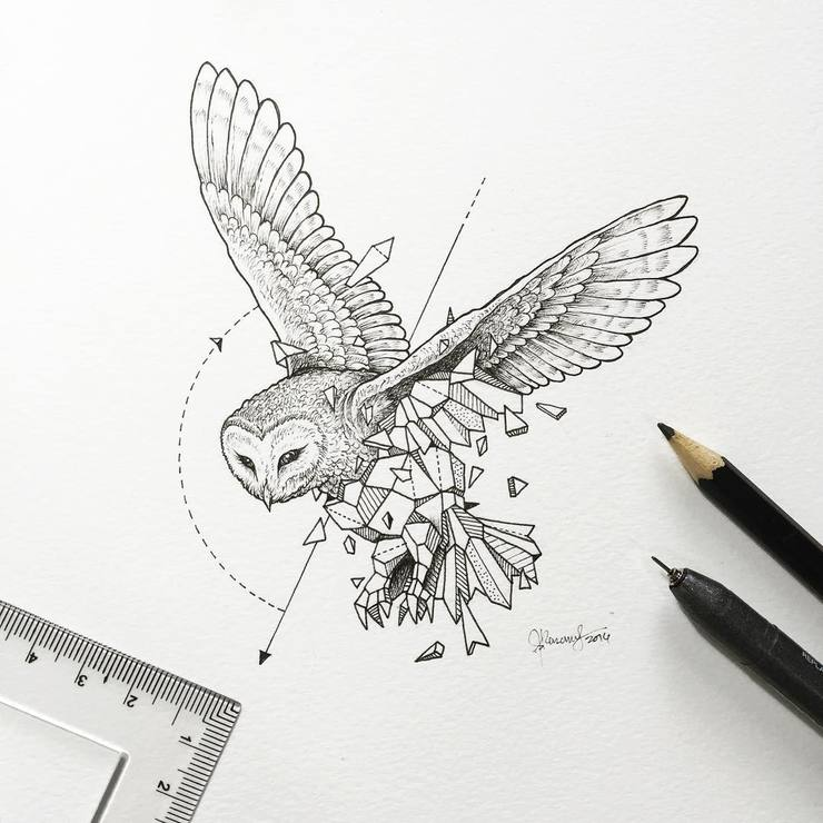 Abstract-Geometric-Animal-Illustrations-By-Kerby-Rosanes-06